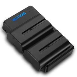 BESTON 2-Pack NP-F550 Battery Pack and USB Dual Charger Kit